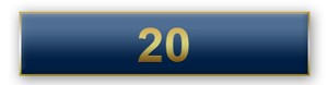 20 Years Of Service Blue Citation Bar
