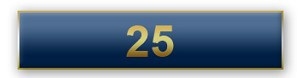 25 Years Of Service Blue Citation Bar