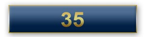 35 Years Of Service Blue Citation Bar