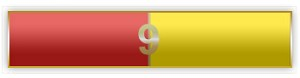 9 Years Of Service Red And Yellow Citation Bar